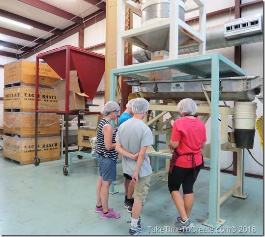 Travel Journal- Heart of the Desert Pistachio Farm in Alamogordo, NM